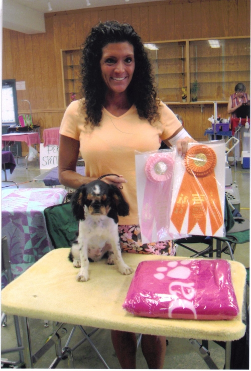Griffins first match. Best of Breed and Toy Group #1