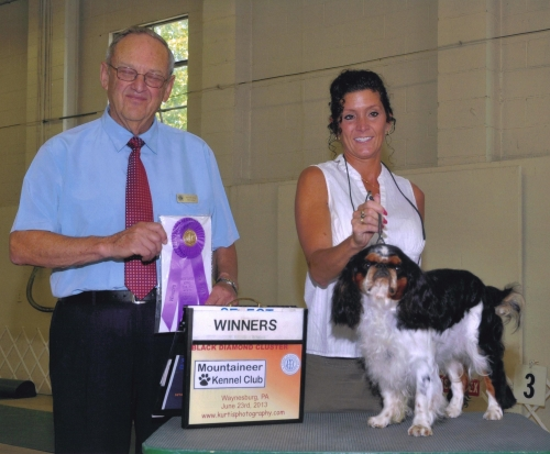 Griffin newest win under Kenneth Berg. Was a good show weekend with him taking reserve at our club specialty show, then